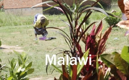 Malawi video screenshot for web.jpg
