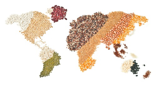 World Grains 500.jpg